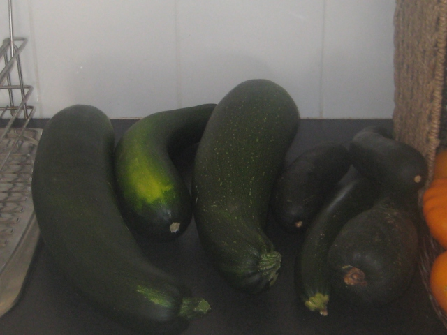 Zuchini monsters