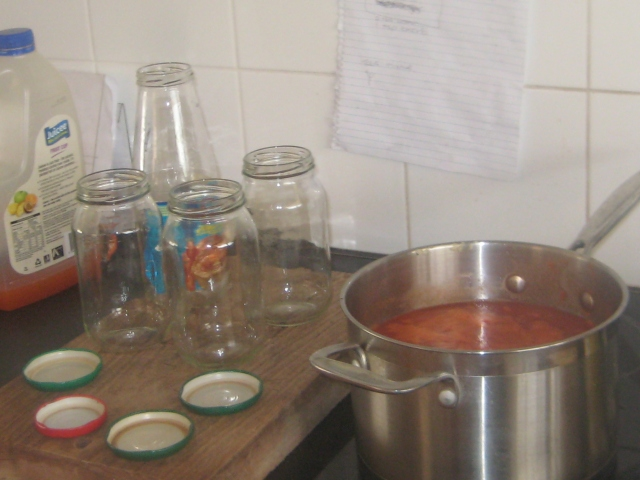 getting ready to preserve tomatos