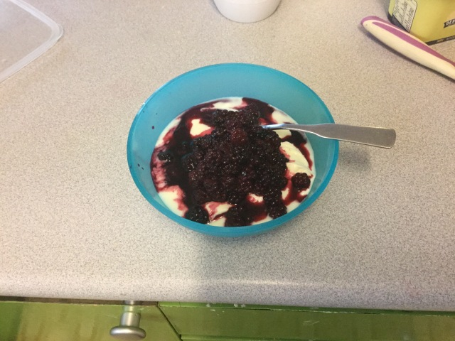 Vanilla Yoghurt with Blackberries